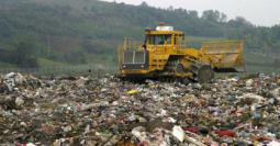 free-waste-management-essays